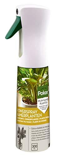 Pokon Zimmerpflanzen Powerspray für Palmen und Grünpflanzen, 2in1 Wirkung, Pflegt und düngt in einem Schritt, 300ml
