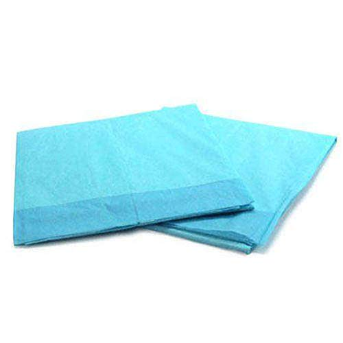 Platinum Care Pads Disposable Underpad, Blue (Chux) (17 Inches X 24 Inches 300 Per Case)