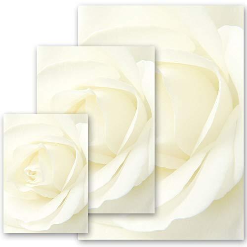 50 Blatt Briefpapier Blumenmotiv, Rosenmotiv WEISSE ROSE - DIN A4 Format | Paper-Media