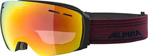ALPINA Unisex - Erwachsene, GRANBY QVMM Skibrille, black matt, One size