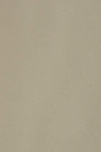 20 x Blatt Grau 250g Tonkarton DIN A4 210x297mm Burano Pietra - ideal für Karten, Scrapbooking, Basteln und Dekorieren mit Papier, Einladungen, Kunst und Handwerk