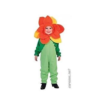 Disfraz de flor para niño - De 4 a 6 años: Amazon.es: Juguetes y ...