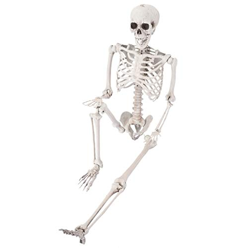 Micozy 5.4 Ft Halloween Skeleton, Life Size Realistic Human Bones, PP Material, Seven Adjustable Joints, Can be Suspended from Ceiling, Suitable for Halloween or Prank Themes