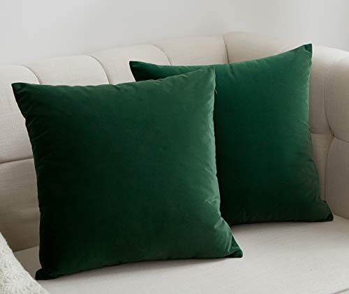 JSBYY Velvet Throw Pillow Covers Solid Color Decorative Square Soft Cushion Cases for Sofa Car 18x18 Inch Set of 2 Dark Green