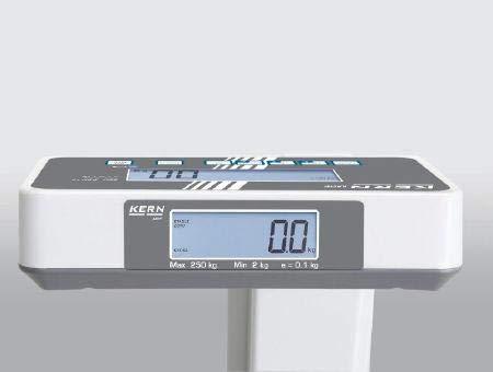Professionele personenweegschaal met BMI-functie [kern MPE 250K100PM] met ijk- en medische goedkeuring, weegbereik [max]: 250 kg, afleesbaarheid [d]: 100 g, maatstaf: Nee
