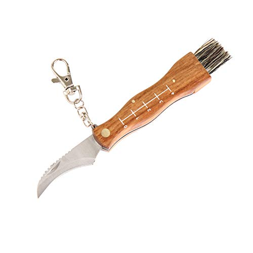 Flanacom Pilzmesser mit Bürste/Pinsel und Lineal zum aufklappen aus rostfreiem Stahl - hochwertiges kleines Taschenmesser Klappmesser für Outdoor und Camping (Messer)