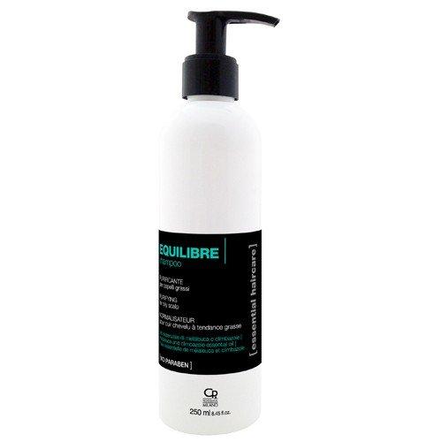 Essential Haircare - Shampoing Equilibre - Traitement Purifiant et Apaisant Professionnel pour Cheveux Gras - Combat l'Exces de Sébum - 250 ml