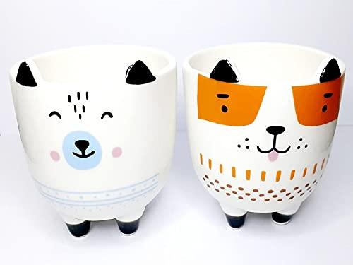 Kit Com 3 Vasos De Plantas Cerâmica Carinhas Divertidas