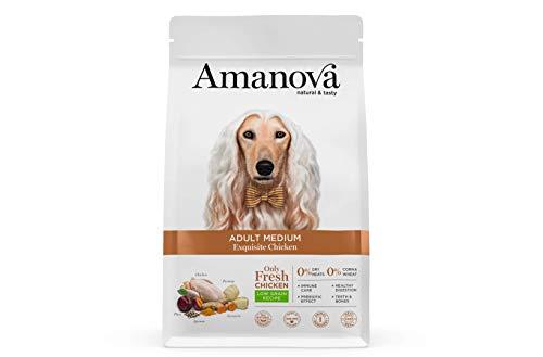 Amanova Cibo Secco Super Premium per Cani Adulti Taglia Media Gusto Pollo - 100% Naturale, ipoallergenico e monoproteico - Low Grain - Cruelty Free - Formato da 2 kg