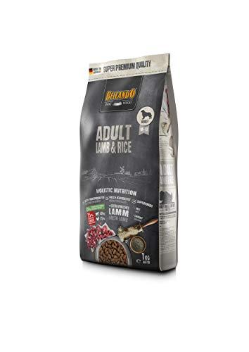 Belcando Adult Lamb & Rice Hundefutter   Trockenfutter für empfindliche Hunde   Alleinfuttermittel für ausgewachsene Hunde ab 1 Jahr (1 kg neu)