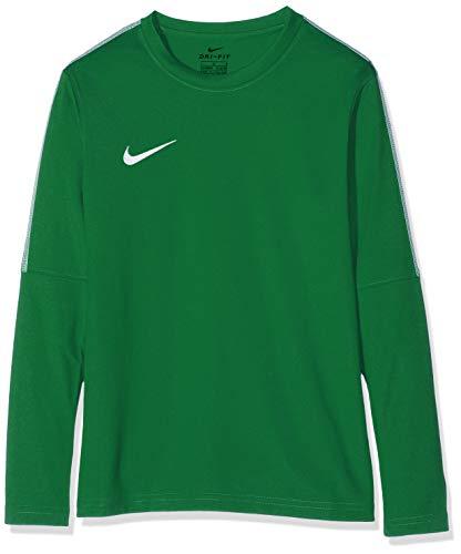 Nike Unisex jungen Dry Park 18 Crew langarm T-shirt, Grün (Pine Green/White/302), Gr. S