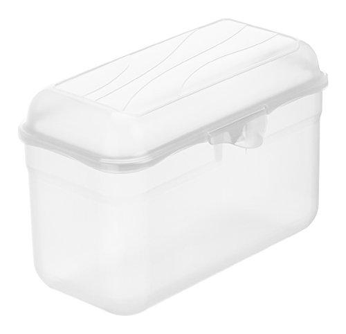 Rotho Funbox Vesperdose 1.75 l, Kunststoff (BPA-frei), transparent, 1.75 Liter (19,5 x 10,5 x 12,5...