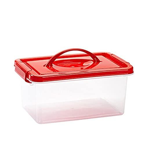 Plastic Forte - Caja de plástico con Tapa de Color Surtido y asa, de 29 x 18,5 x 13 cm, 4 litrosl. Baúl con Tapa para organización del hogar. Arcón de plástico para Distintos usos