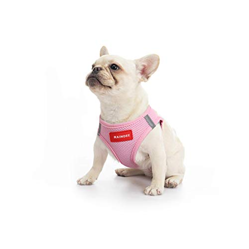 RAINDEE Dog Harness All Weather Soft- Mesh Vest Harness for Small and Medium Dogs 4 Size 7 Colors