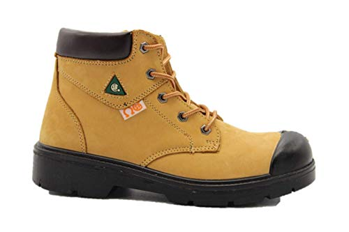 Dolphin 6 CSA approved safety leather boots, construction boots, works shoes (11.5 M US)