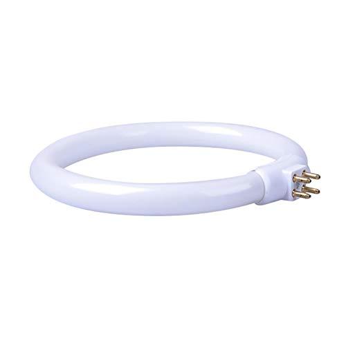 Anillo de Tubo de lámpara Redonda T4 de 11W Lámpara de Anillo de Tubo de lámpara Redonda de Cuatro pies. 840 - Blanco Frio - 4000k - (Clase energética A)