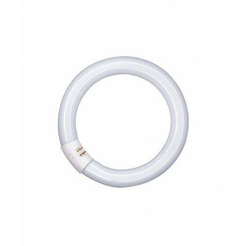 Osram L G10q 827 C - Lámpara fluorescente circular, 26 mm, 32 W