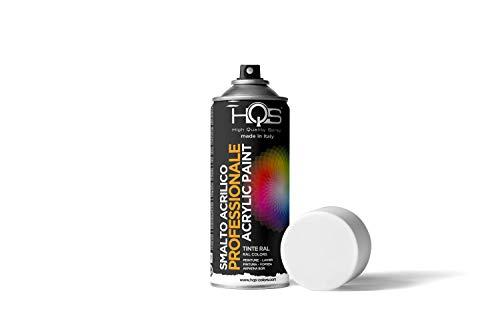 HQS Bomboletta di Vernice Spray Acrilica Colori Ral (Ral 9005 Nero Lucido)