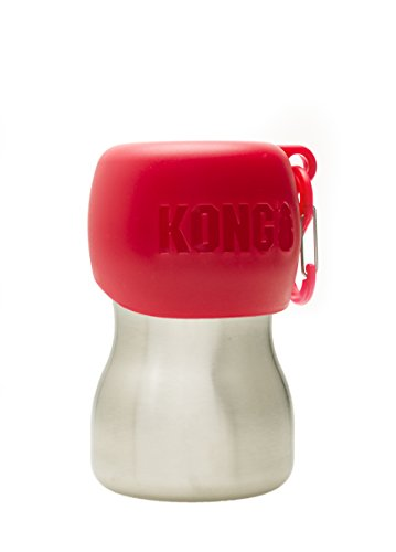 KONG H2O KG95RED Stainless Edelstahl Wasserflasche, 0.28 L, S, rot