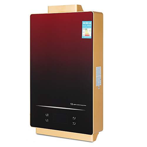 OldFe Scaldabagno GPL A Gas Liquefatto Scaldabagno A Gas 12L LPG Con Digitale LCD Scaldabagno Temperatura Costante Automatico E Rapidamente