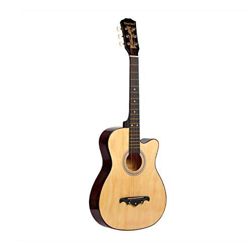 ギター 初心者 入門 アコースティック クラシックギター どこへでも気軽に持ち運べ