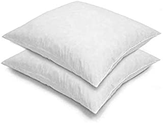 Blue Ridge Home Fashions, 26x26 Feather Euro (2 Pack),Hypoallergenic European Sleep Pillow Inserts Sham Square Form, White