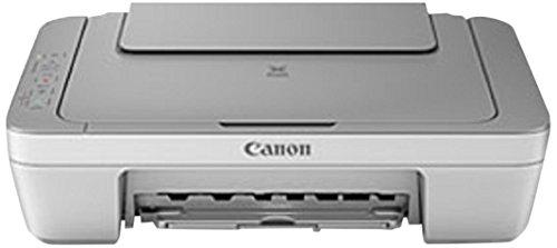 Canon Pixma MG2450 Stampante Multifunzione Inkjet, 4800 x 600 dpi, Argento