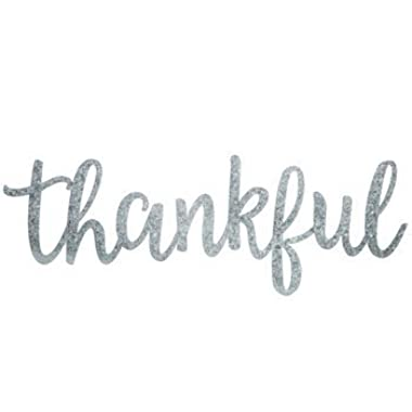 Thankful Word Galvanized Metal Wall Decor