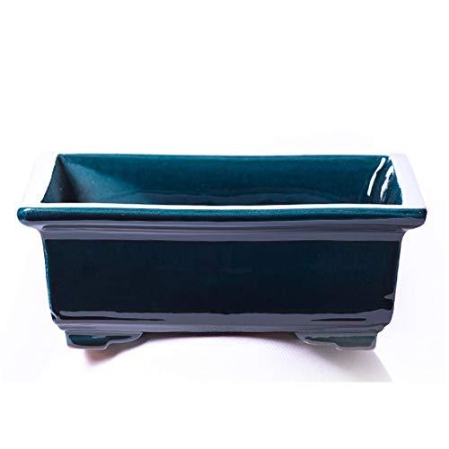 Alfareros Damian Canovas Maceta para Bonsai DE Barro Y ESMALTADA EN Color Azul RABEL. Medidas 28X22X10CM.Modelo Kobe. con TU Compra TE REGALAMOS EL Plato.