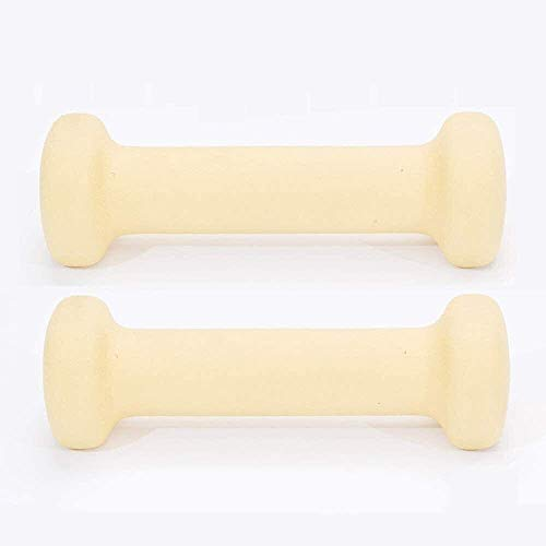Fitness Equipment For Beginners, Ladies Fitness Household Dumbbells 1kg 2kg 3kg 4kg 6kg 10kg gym weight For your health, you are the best. Come on (Size : 2x0.5Gb)