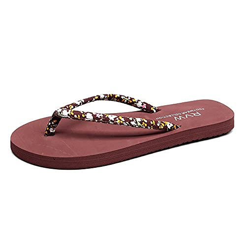 ZHIZI Chanclas Sandalias y Zapatillas de Damas de Banda Estrecha Lace Flip-Flobs Flip-Summer Top Flip Sandals (Color : Brown, Size : US6/EU37/UK4)