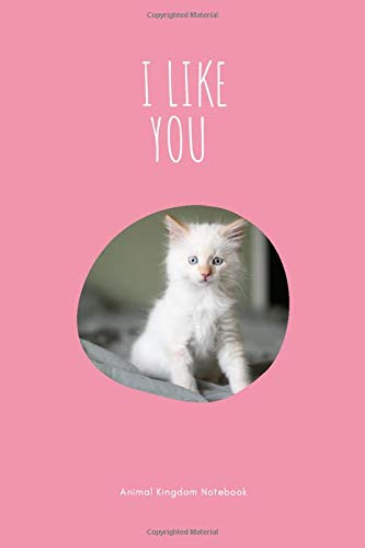 I like you / Animal Kingdom Notebook: Cat Notebook for Animal lovers, Cute Kitty Notepad gift, College Ruled Wide Lined Journal, 6x9 inches