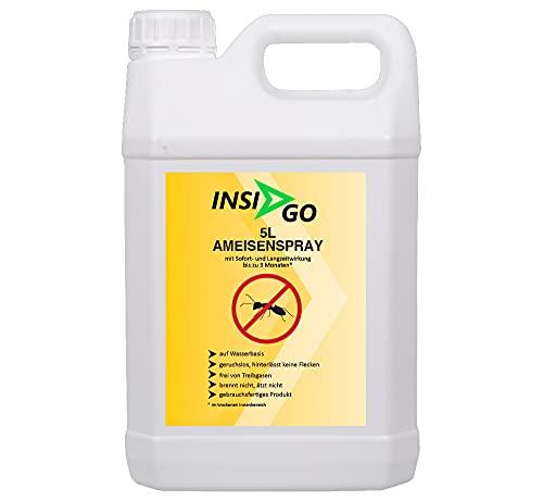 INSIGO Ameisenspray hochwirksam gegen Ameisen und Ameisenlarven auf Wasserbasis - geruchlos Ameisen bekämpfen - hinterlässt Keine Flecken - 5 Liter