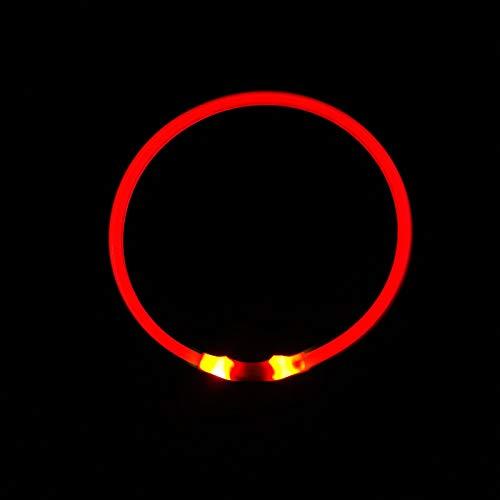 HPOLW Collare Luminoso per Cani Collare di Cane Impermeabile Ricaricabile USB LED Collare Luminoso di Sicurezza per Animale Domestico d'ardore Misura Regolabile Adatto Tutti i Cani Gatti Rosso