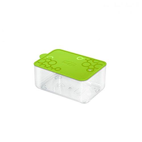 Aufbewahrungsbox Dose aus PVC rechteckig mit.Tengo S Giò Style Spitze grün Frische Pasta Essen Kekse