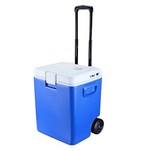 LYN hete en koude koelkast, draagbare mini-koelkast, 12 V