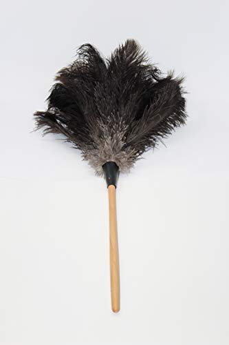 GM Royal Ostrich Feather Duster (Large GM03 (28'), Black)
