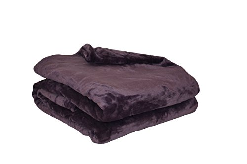 Couverture Polaire Polyester Prune 220 x 240 cm - POYET MOTTE - Gamme MICROFLANELLE