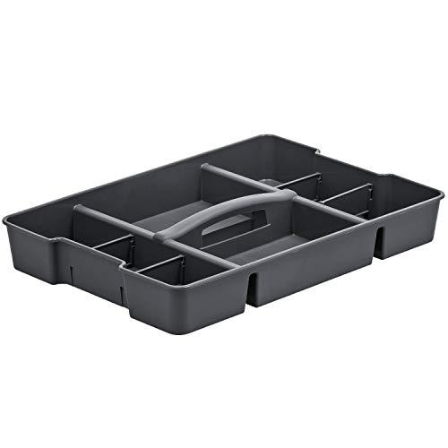 Rotho Evo Utilisation avec des Compartiments et des Cloisons, Plastique (PP) sans BPA, Anthracite, 51,6 x 36,5 x 7,3 cm