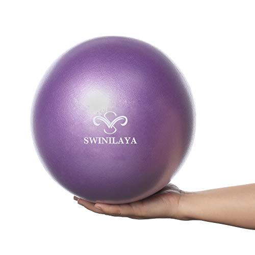 SWINILAYA Pelota de Ejercicios de Yoga y Pilates de 9,8 Pulgadas para Entrenamiento de Equilibrio de Estabilidad para Entrenamiento de núcleo, Fisioterapia, Mejora el Equilibrio