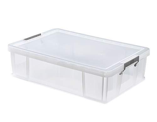 Whitefurze–Contenitore Contenitore portatutto in Argento con Morsetto, plastica, Naturale, 37Litri