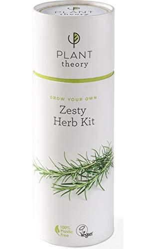 Plant Theory Zesty Herb Kit cadeau pour cultiver vos propres légumes bio avec compost végétalien 5 pots biodégradables et 100% sans plastique