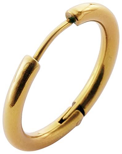 [フロム ダ ファクトリー]サージカルステンレスシリーズ フープピアス 軟骨ピアス (内径16mm,カラー ゴールド)