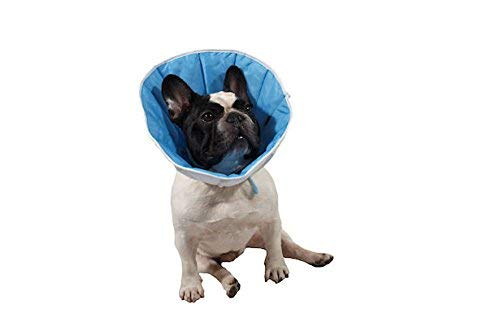 Kragen / Kegel post-operativen für Hunde, Katzen oder Kaninchenn 4(XL) Kopfumfang:36-44cm; Höhe: 23cm