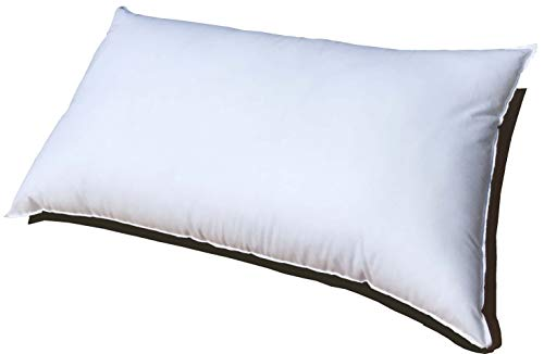 pillow insert 24x16 - 3