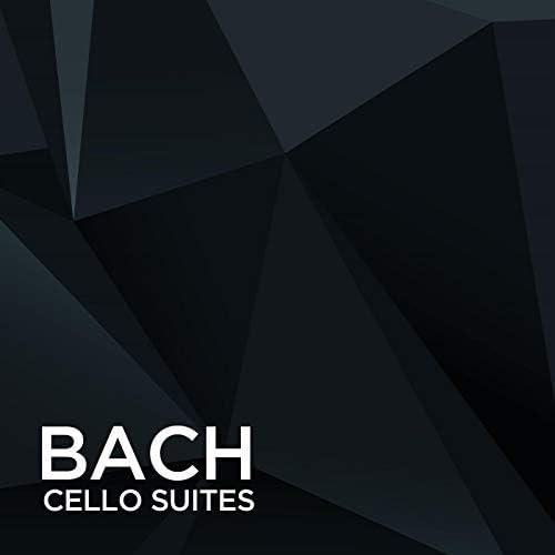 Johann Sebastian Bach, Victor Yoran & Various Artists
