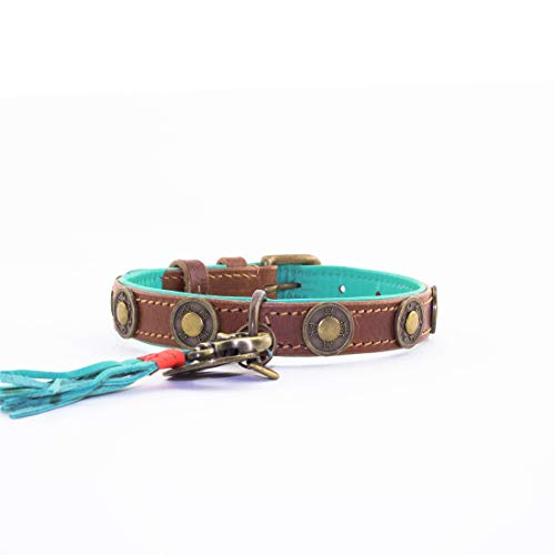 Dog with a Mission DWAM Halsband Urban - S (2 cm)