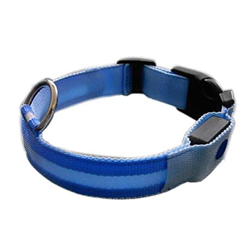 LED Hundehalsband Nacht Pet Zubehör Sicherheits-Blitzen-Kragen-Licht-up-Hundehalskette Schleife Welpen Illuminating Halsband mit Verstellbarer Schnalle (L, Blau)