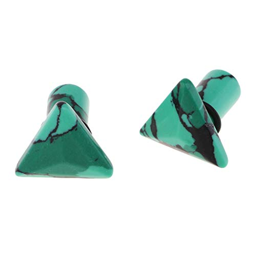 F Fityle 1 Par Dilatación Oreja de Piedra Expansor de Túnel de Oídos para Hombre Mujer 6/8/10mm