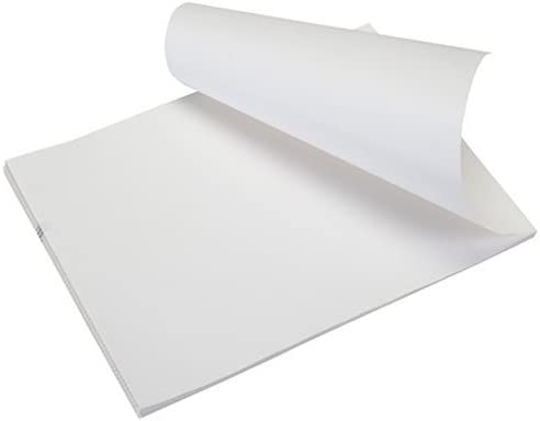 Pentax Fanfold Perforated Paper Ranking TOP2 Sheets 205494 Sales results No. 1 1000